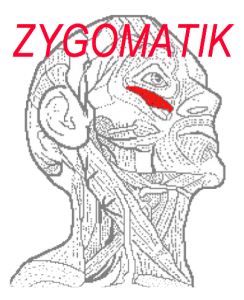 Zygomatik-logo-rood-screenfoto